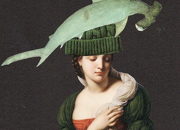 Le requin et le bonnet