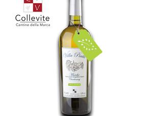 Vino biologico, organic wine: un prodotto di qualità superiore o semplicemente opportunità di scelta