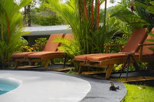 Pool-Chairs.jpg