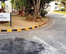 Toyota Training institute road