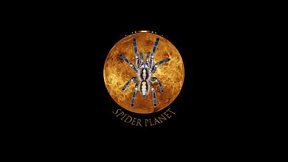logo metka.png