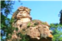 Bhopal Tourism, Bhopal Attractions, Bhimbetika, Bhopal Wildlife Tourist Attractions