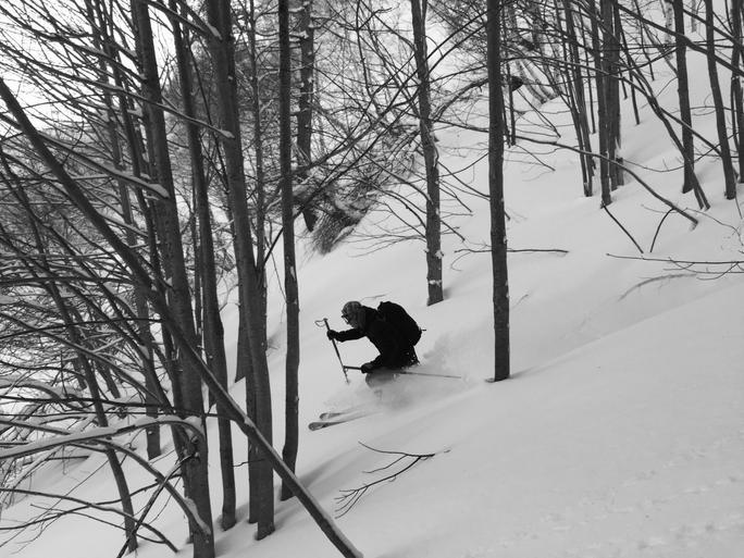 Ski plaisir en fôret