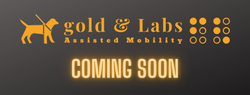Gold & Labs Opening Soon