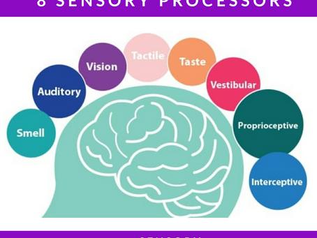 The 8 Sensory Processors