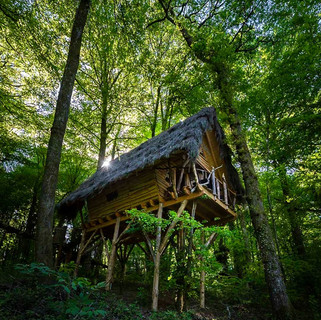 Cabane des fées