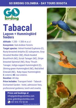 Tabacal Lagoon + Jardín Encantado.