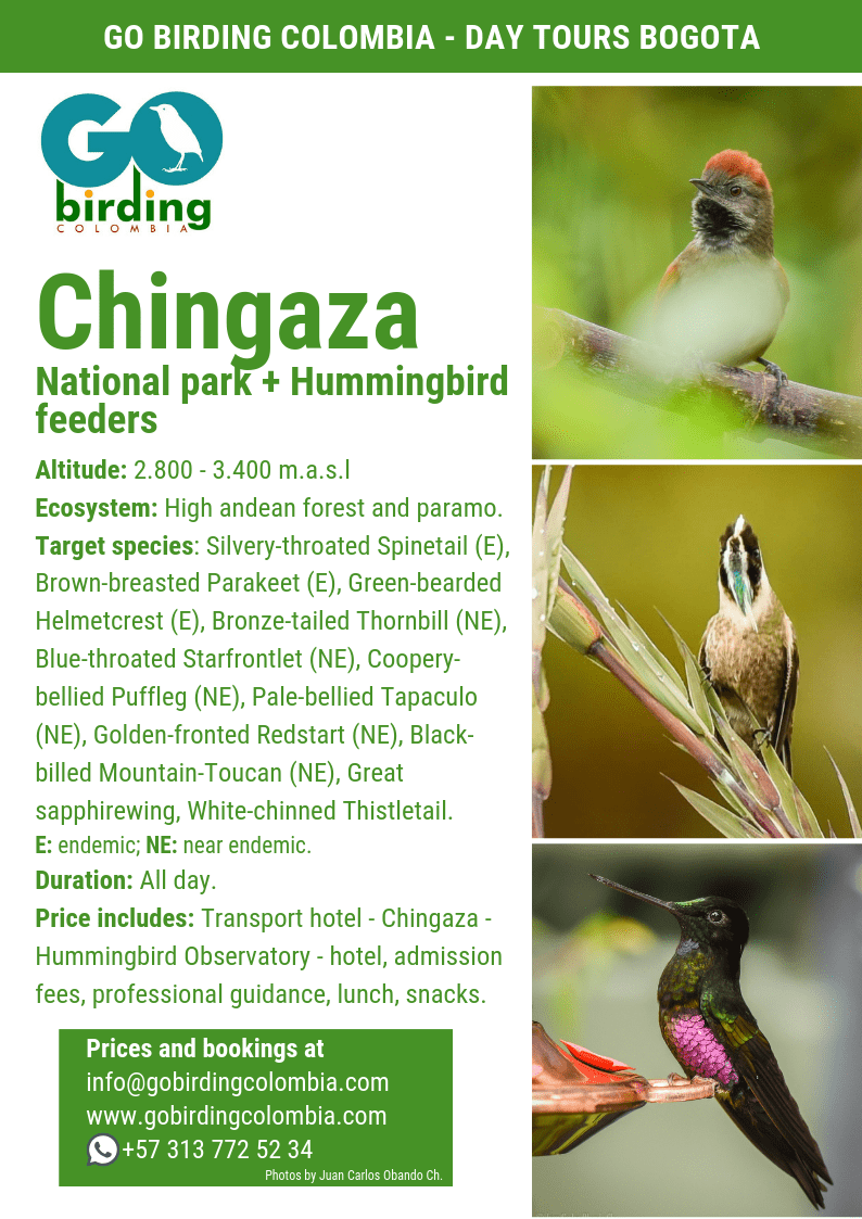Chingaza National Park + Hummingbird Observatory.