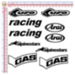 RACING ELF SAN CARLO APRILIA GAS RACING ALPINESTAR ARAI UFO AGIP NGK REGINA CHAIN