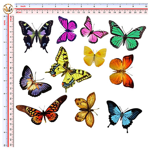 Sticker butterflies decal Adesivi farfalle 11 Pz.