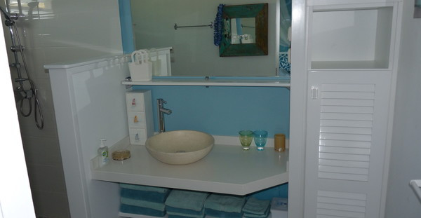 Salle de bain 7 - Nb Desginer- Agencement intérieur en Guadeloupe