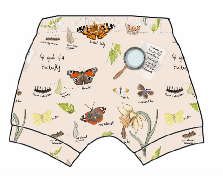 Butterfly Life Cycle Shorts