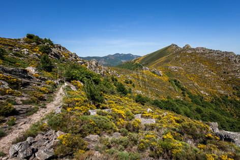 Randonnée sur le massif de l'Espinouse