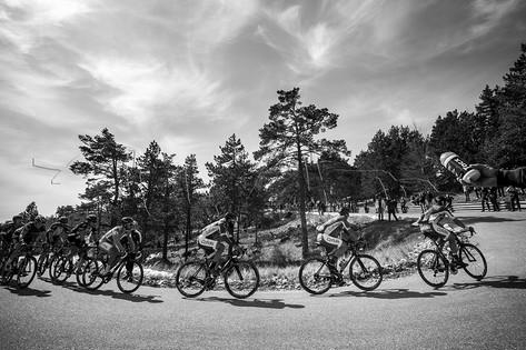 Coureurs cyclistes dans l'ascension du mont Ventoux