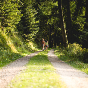 A motorhome holiday guide to The Black Forest   Part 1