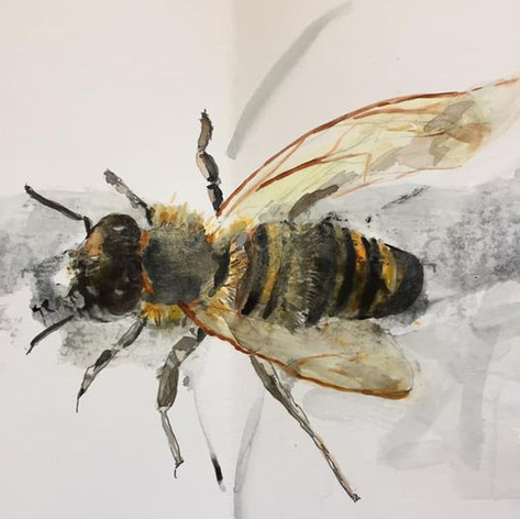 Bee - Sold