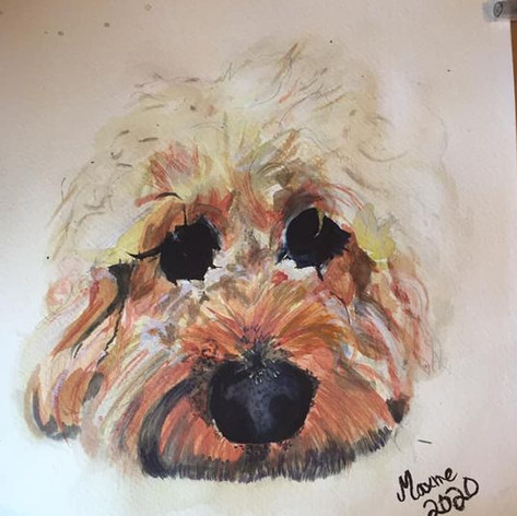 Pupster - Sold