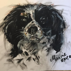 King Charles - Sold