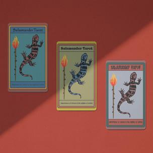 Salamander Tarot Cards Logo
