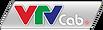 VTVcab(logo).png