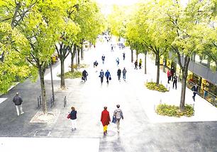 Avenue du midi à Sion
