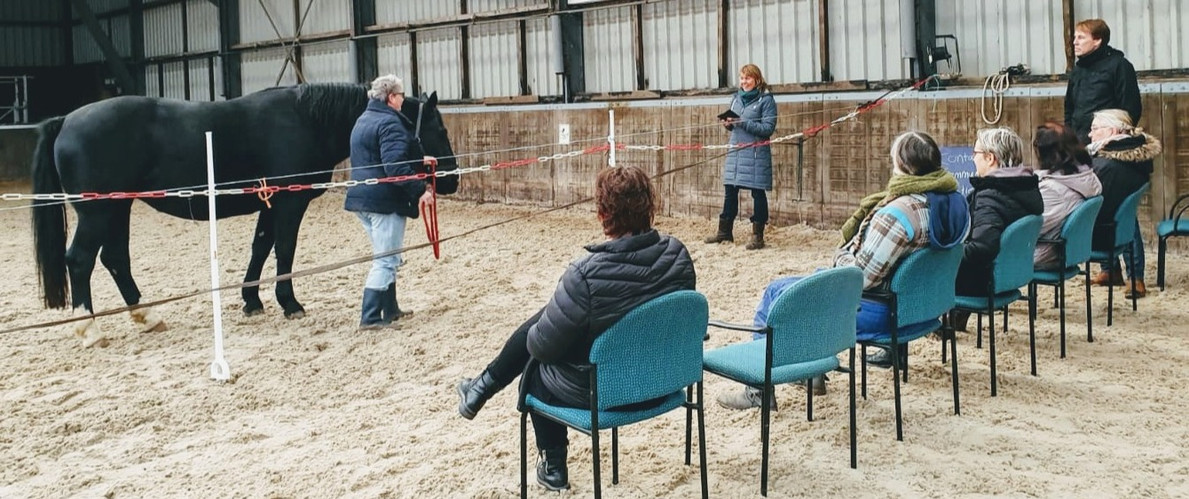 teamtraining%20manege_edited.jpg