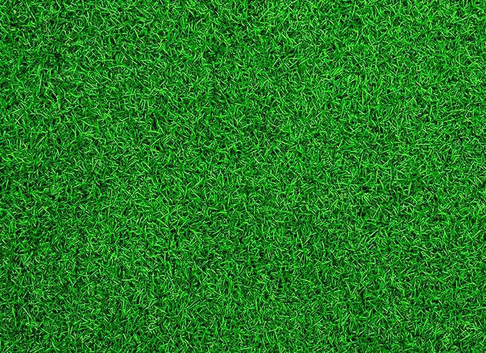 pasto-sintetico-5m.jpg