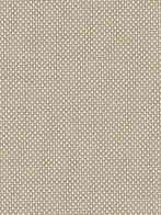 Vision Designer Collection - Biscuit.jpg