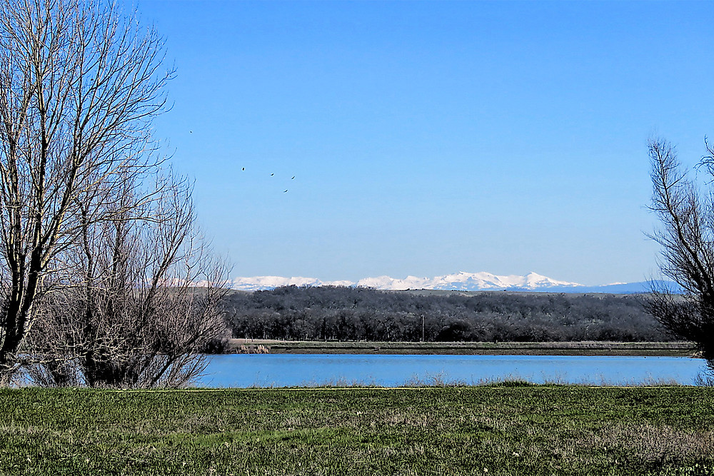 Beautiful Lake Calero with snow in the Sierra's early this year.