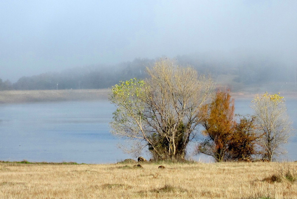 Deep into Fall and fog rising over Lake Calero this morning.