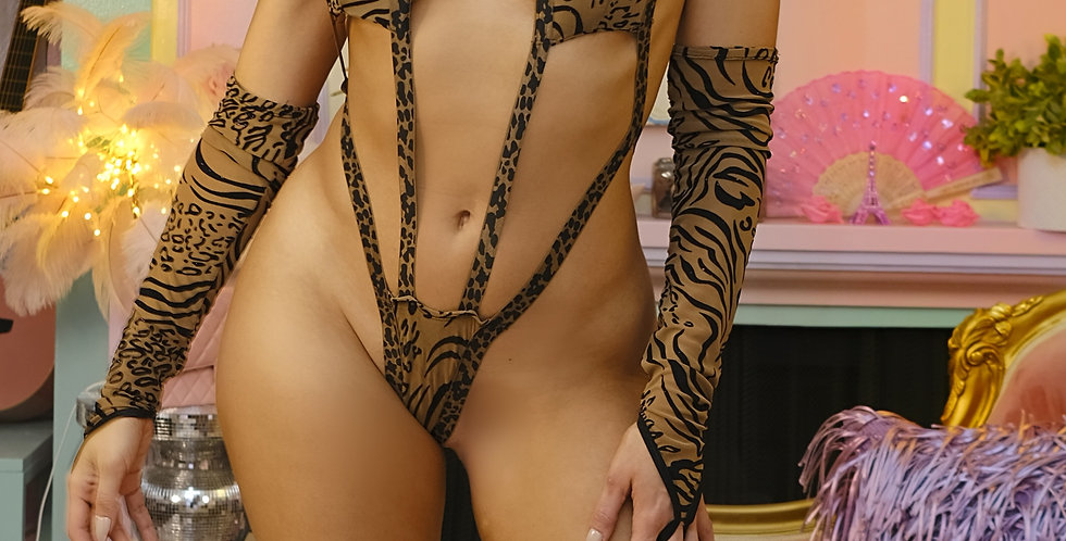 Cougar Teddy set with gloves