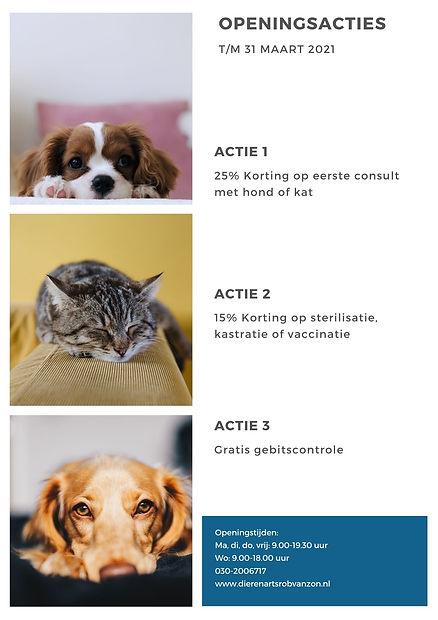 The Art of Healthy Living(2).jpg