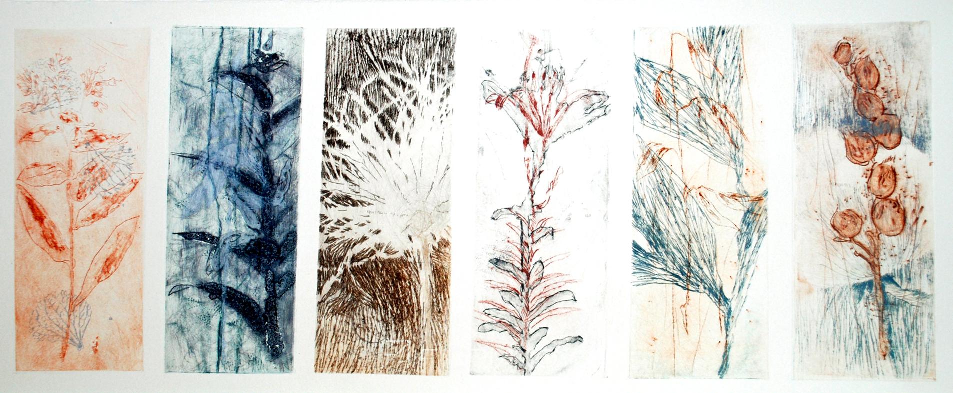 2014 Botanique sepia