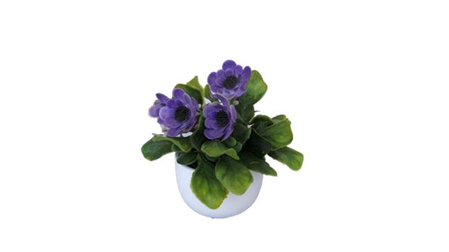 Decorative Plant - Purple Flower