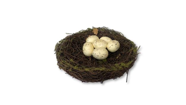 Round Nest with Eggs