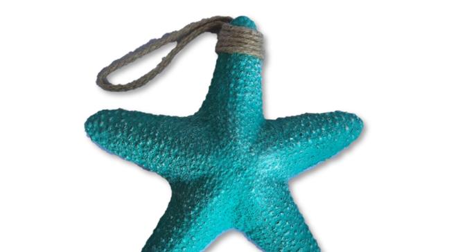 Sea Star - Turquoise