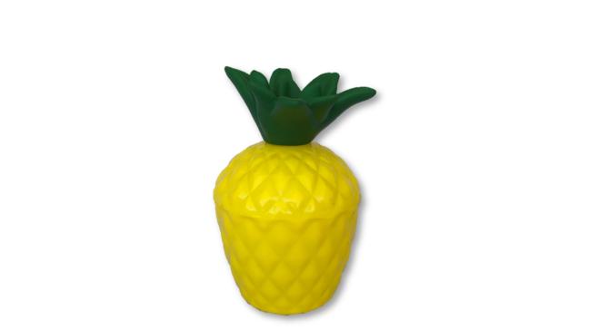 Plastic Pineapple