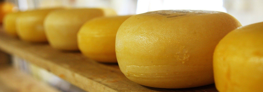 Cheese | 7 facts | Switzerland