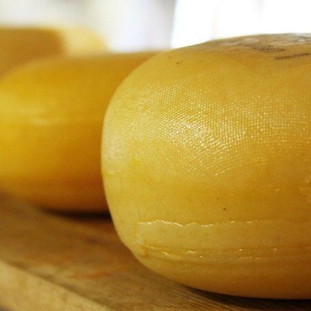 7 Fakten über Schweizer Käse