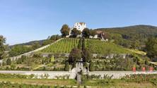 Wildegg Castle