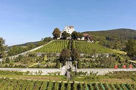 Wildegg Castle, BAROQUE ESTATE,  Effinger family, Wildegg, Möriken, rose garden, pro specie rara