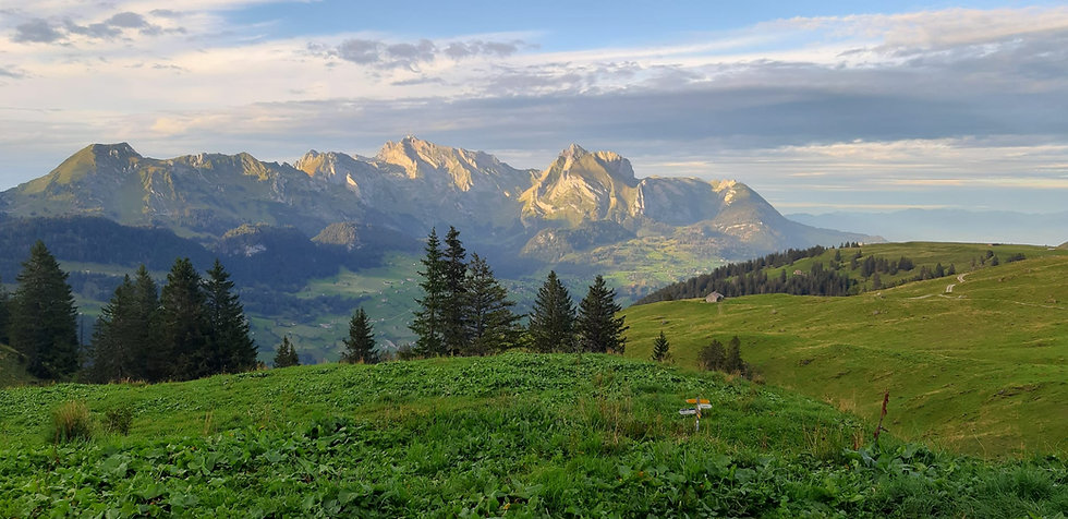 View from the Selun Alp _ Switzerland _
