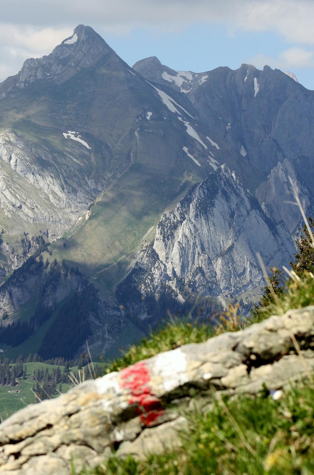 Marked Path | Schafberg | Hike Wandern randonée