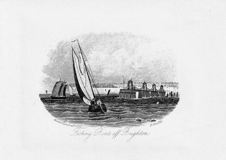 Seafront Heritage Trust Illustrations (14 of 15).jpg