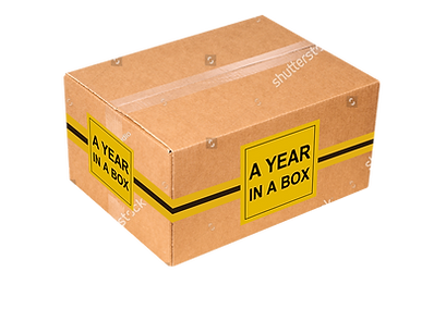 A year in a box.png