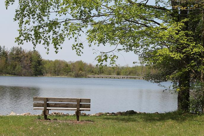 bench looking over lake.JPG