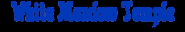 WMT_Logo_Blue.png