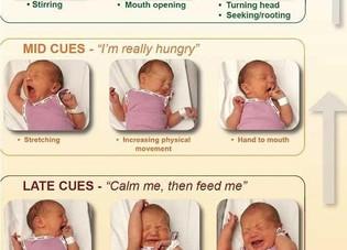 Breastfeeding 101 continued...