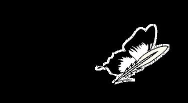 Siretona logo_white text_transparent background.png