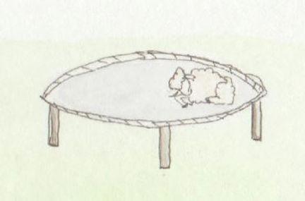 Trampoline Nap - Falling Asheep - Rachel